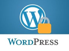 secure wordpress websites